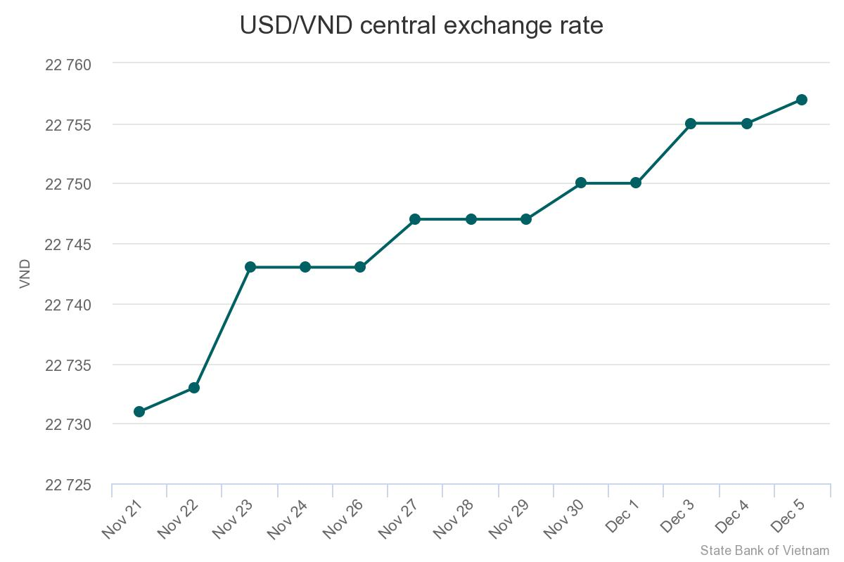 Vietnamese currency falls to new low, could go lower - Vietnam
